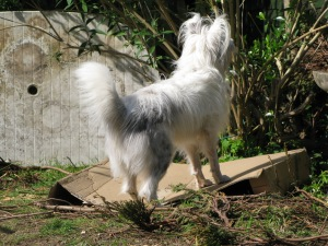Could try standing on it ...