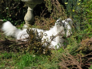 God, it's been a tiring day.